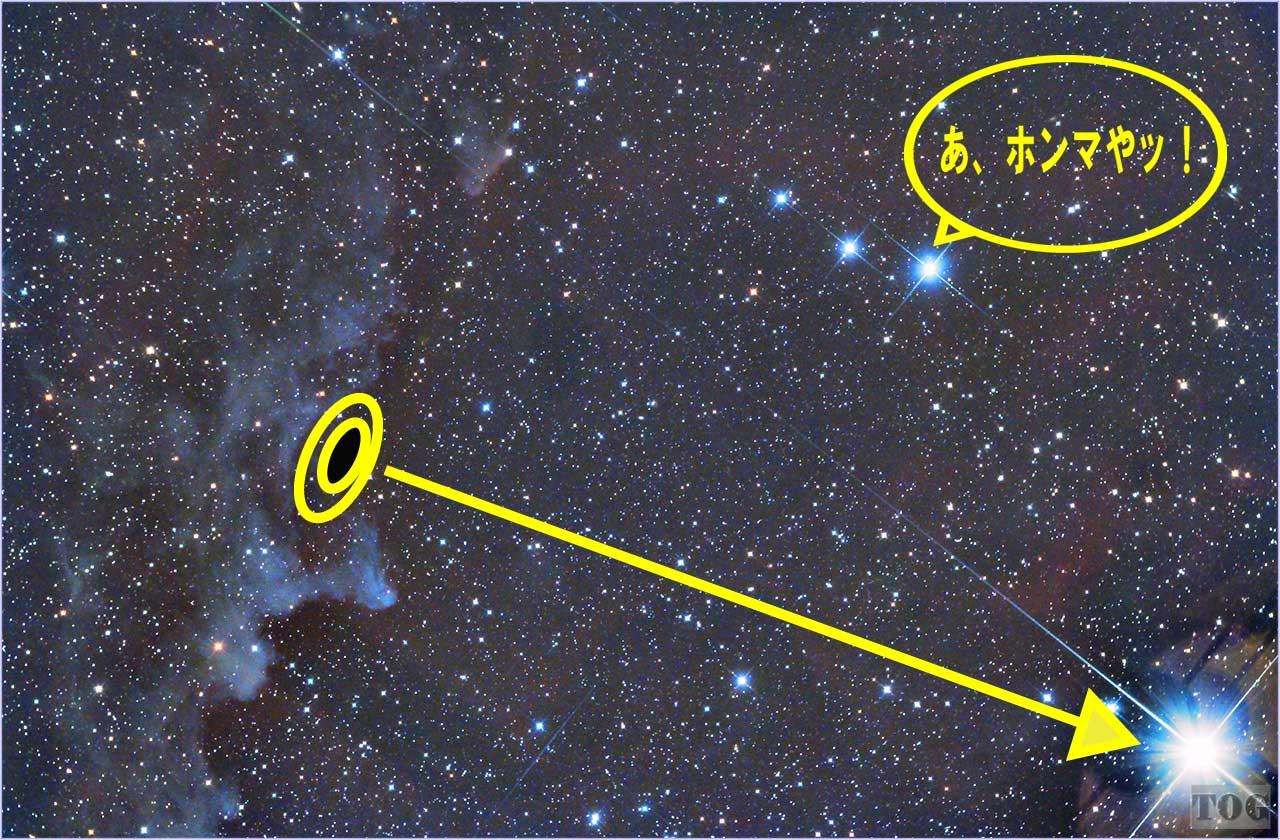 IC2118_homa